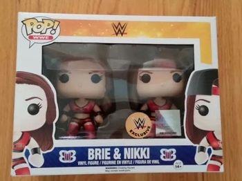 image de Brie & Nikki (Bella Twins)