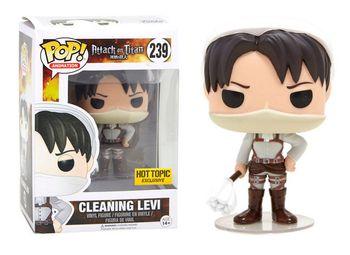 image de Cleaning Levi