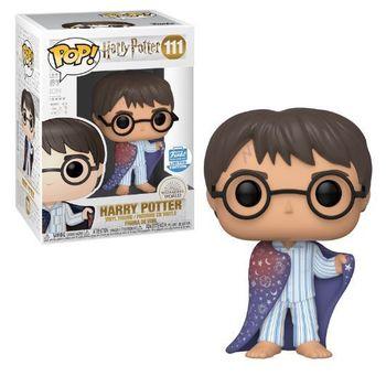 image de Harry Potter in Invisibility Cloak